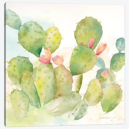 Cactus Garden I Canvas Print #CYN12} by Cynthia Coulter Art Print