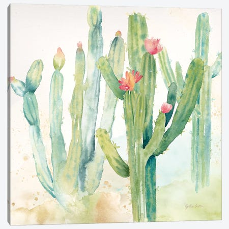 Cactus Garden II Canvas Print #CYN13} by Cynthia Coulter Canvas Art Print
