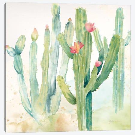 Cactus Garden II Canvas Print #CYN13} by Cynthia Coulter Canvas Art Print