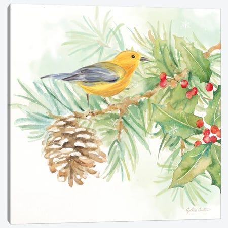 Winter Birds - Warbler Canvas Print #CYN145} by Cynthia Coulter Art Print