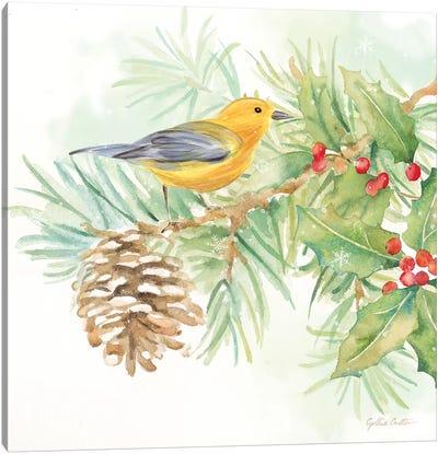 Winter Birds - Warbler Canvas Art Print