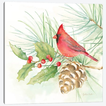 Winter Birds - Cardinal Canvas Print #CYN148} by Cynthia Coulter Canvas Art
