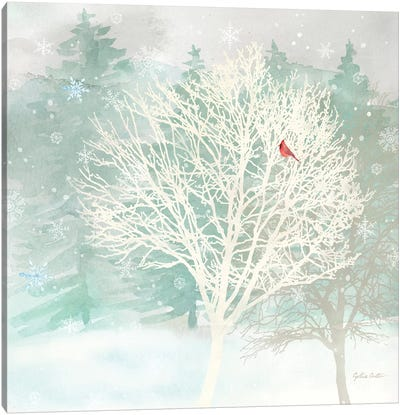 Winter Wonder II Canvas Art Print