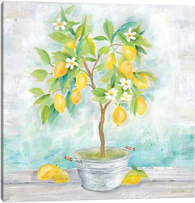 Country Lemon Tree Canvas Art Print