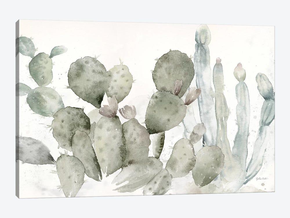 Cactus Garden Landscape Black & White by Cynthia Coulter 1-piece Canvas Print