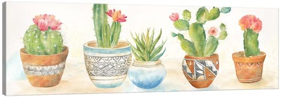 Cactus Pots I Canvas Art Print