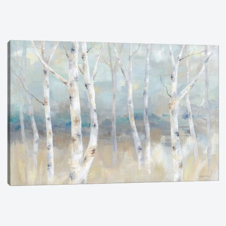 Birch Field landscape Canvas Print #CYN253} by Cynthia Coulter Canvas Artwork