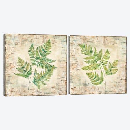 Birch Bark Ferns Diptych Canvas Print Set #CYN2HSET001} by Cynthia Coulter Canvas Artwork