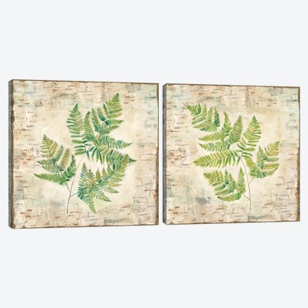 Birch Bark Ferns Diptych Canvas Print Set #CYN2HSET001} by Cynthia Coulter Canvas Artwork