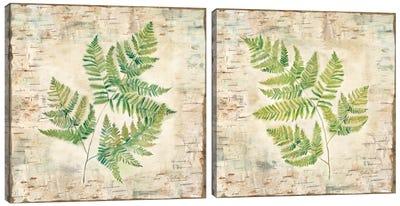 Birch Bark Ferns Diptych Canvas Art Print