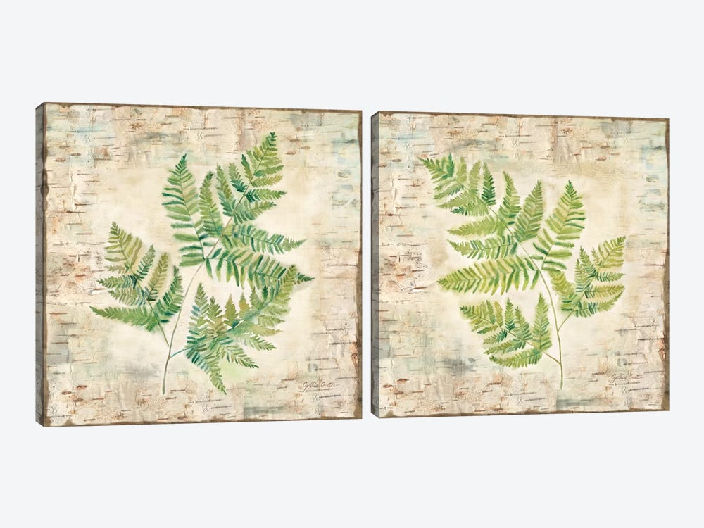 Birch Bark Ferns Diptych by Cynthia Coulter 2-piece Canvas Art Print
