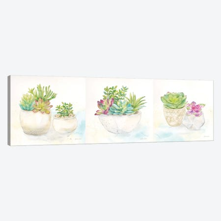 Sweet Succulent Pots Triptych Canvas Print Set #CYN3HSET002} by Cynthia Coulter Canvas Wall Art
