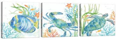 Sea Life Serenade Triptych Canvas Art Print