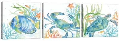 Sea Life Serenade Triptych Canvas Art Print