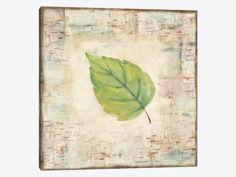 Nature Walk Leaves IV by Cynthia Coulter 1-piece Canvas Artwork