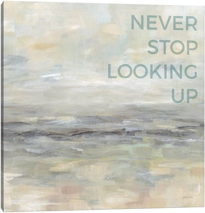 Never Stop Looking Up Canvas Art Print