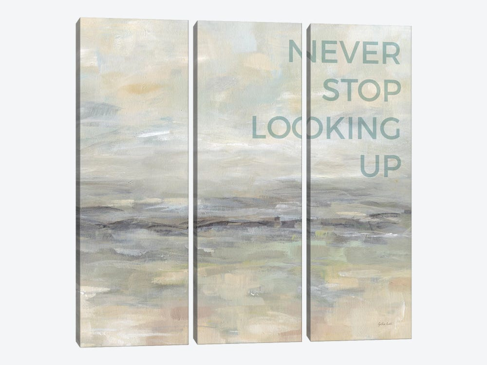 Never Stop Looking Up by Cynthia Coulter 3-piece Art Print