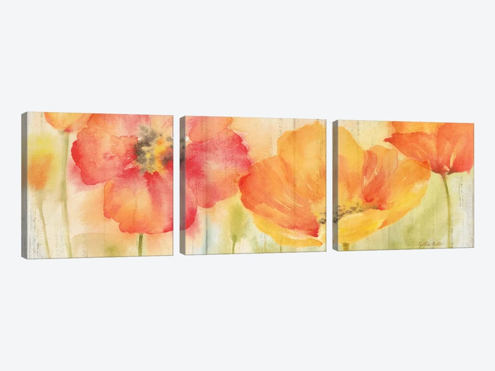 Poppy Meadow Spice Woodgrain Panel by Cynthia Coulter 3-piece Art Print
