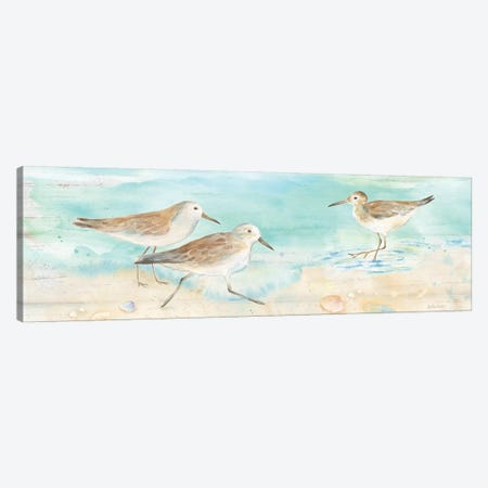 Sandpiper Beach Panel Canvas Print #CYN63} by Cynthia Coulter Canvas Art