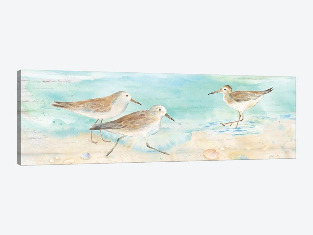 Sandpiper Beach Panel Canvas Artwork by Cynthia Coulter | iCanvas