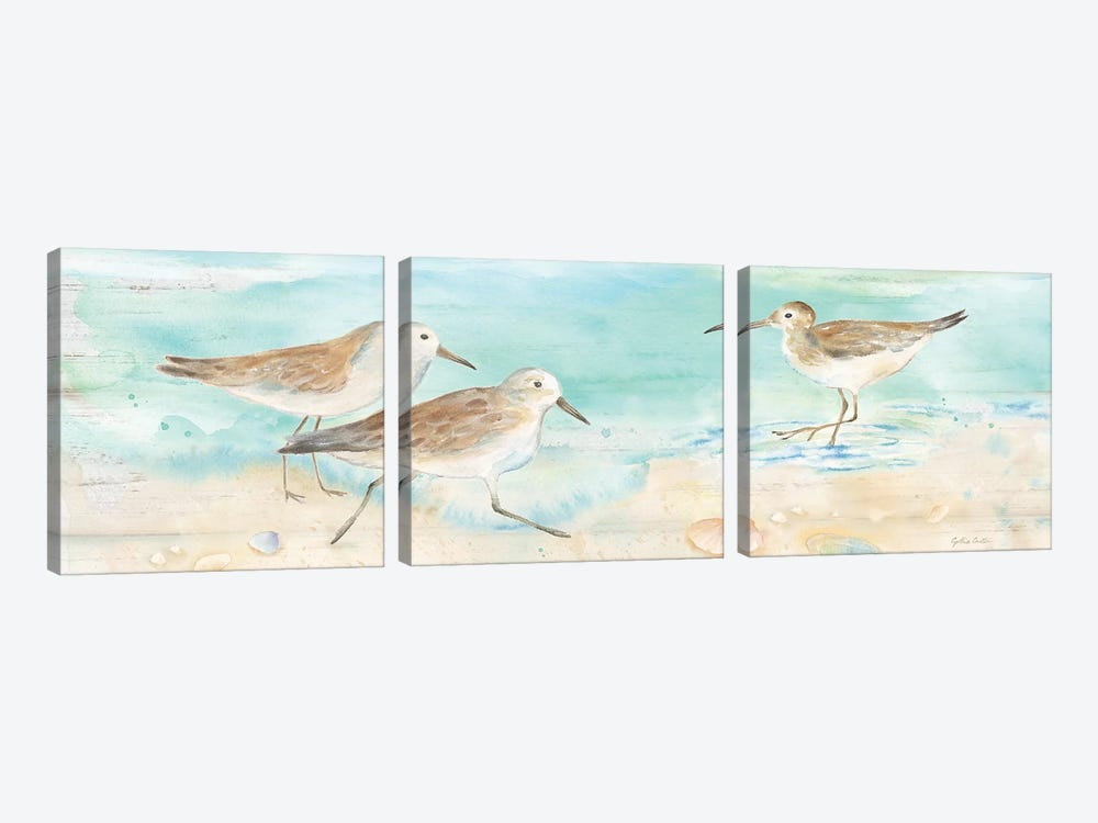 Sandpiper Beach Panel by Cynthia Coulter 3-piece Canvas Wall Art