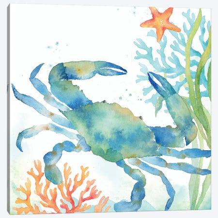 Sea Life Serenade II Canvas Print #CYN65} by Cynthia Coulter Canvas Art Print