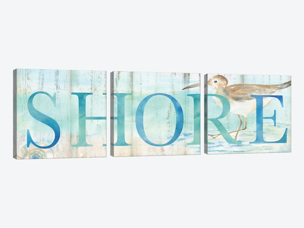 Shore Sandpiper Sign by Cynthia Coulter 3-piece Canvas Artwork