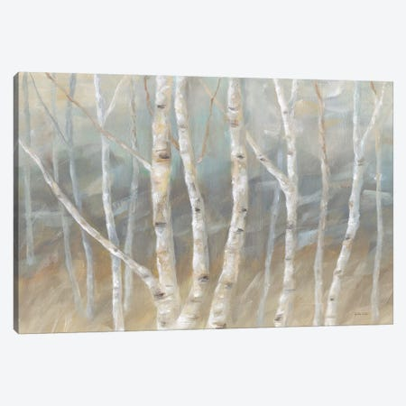 Silver Birch Landscape Canvas Print #CYN71} by Cynthia Coulter Art Print