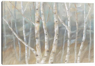 Silver Birch Landscape Canvas Art Print