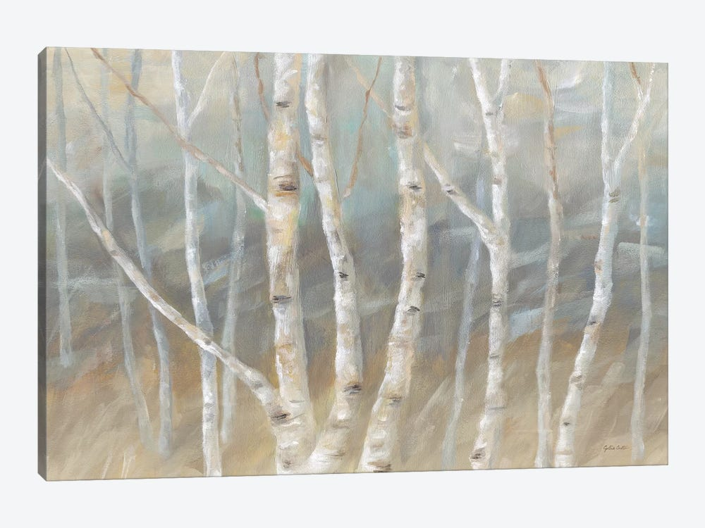 Silver Birch Landscape by Cynthia Coulter 1-piece Canvas Art Print