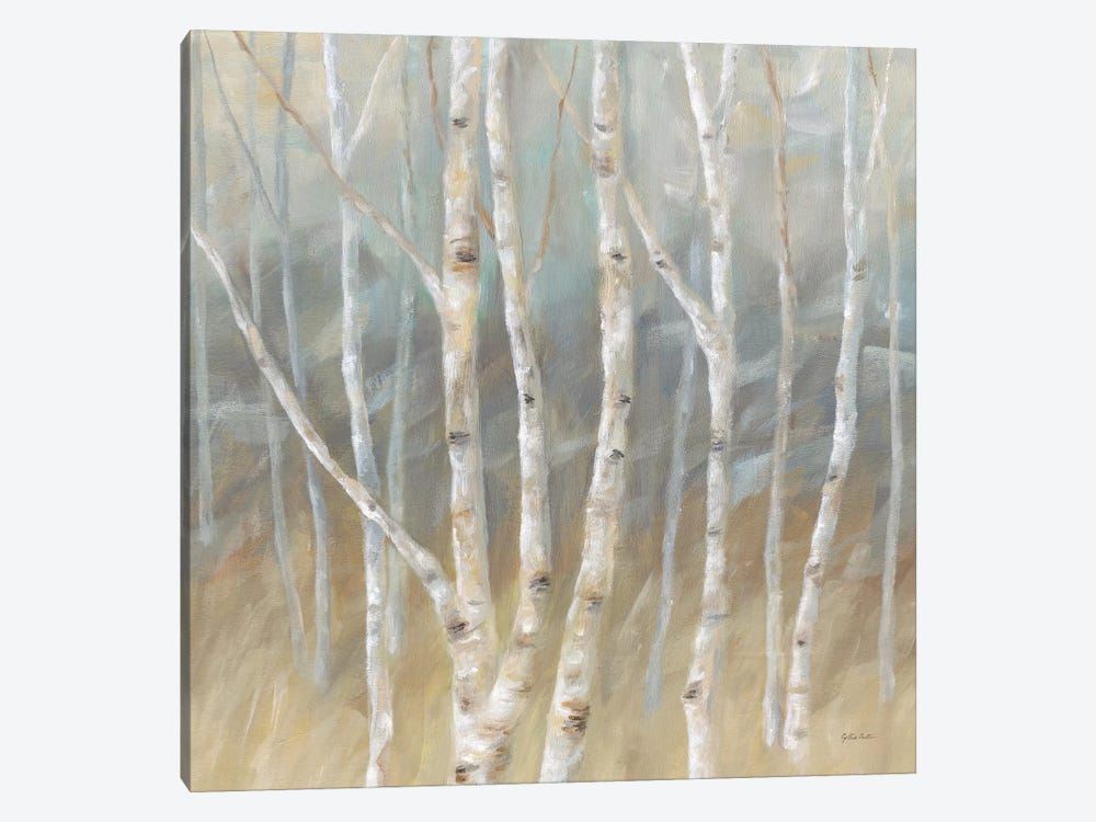 Silver Birch Square by Cynthia Coulter 1-piece Canvas Wall Art