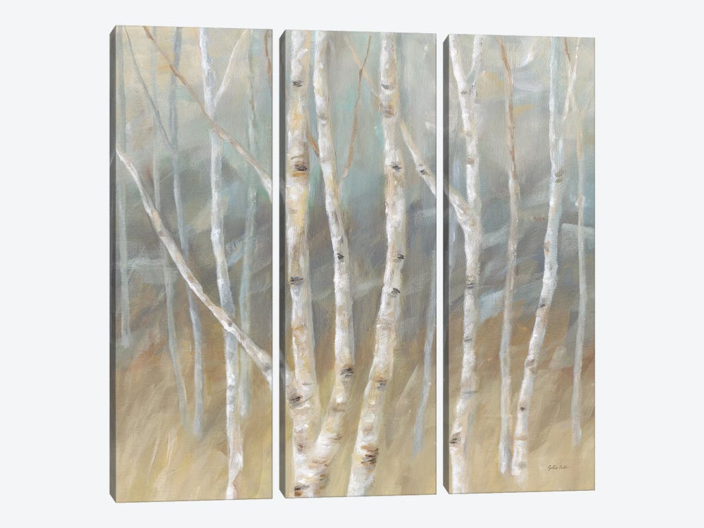 Silver Birch Square by Cynthia Coulter 3-piece Canvas Art