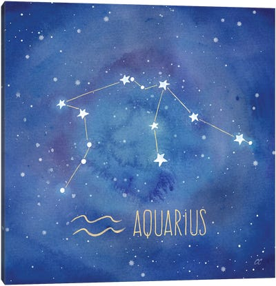 Star Sign Aquarius Canvas Art Print