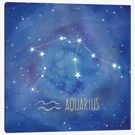 Star Sign Aquarius 3-Piece Canvas #CYN76} by Cynthia Coulter Canvas Art