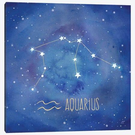 Star Sign Aquarius Canvas Print #CYN76} by Cynthia Coulter Canvas Art