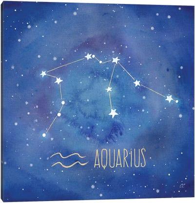 Star Sign Aquarius Canvas Art Print