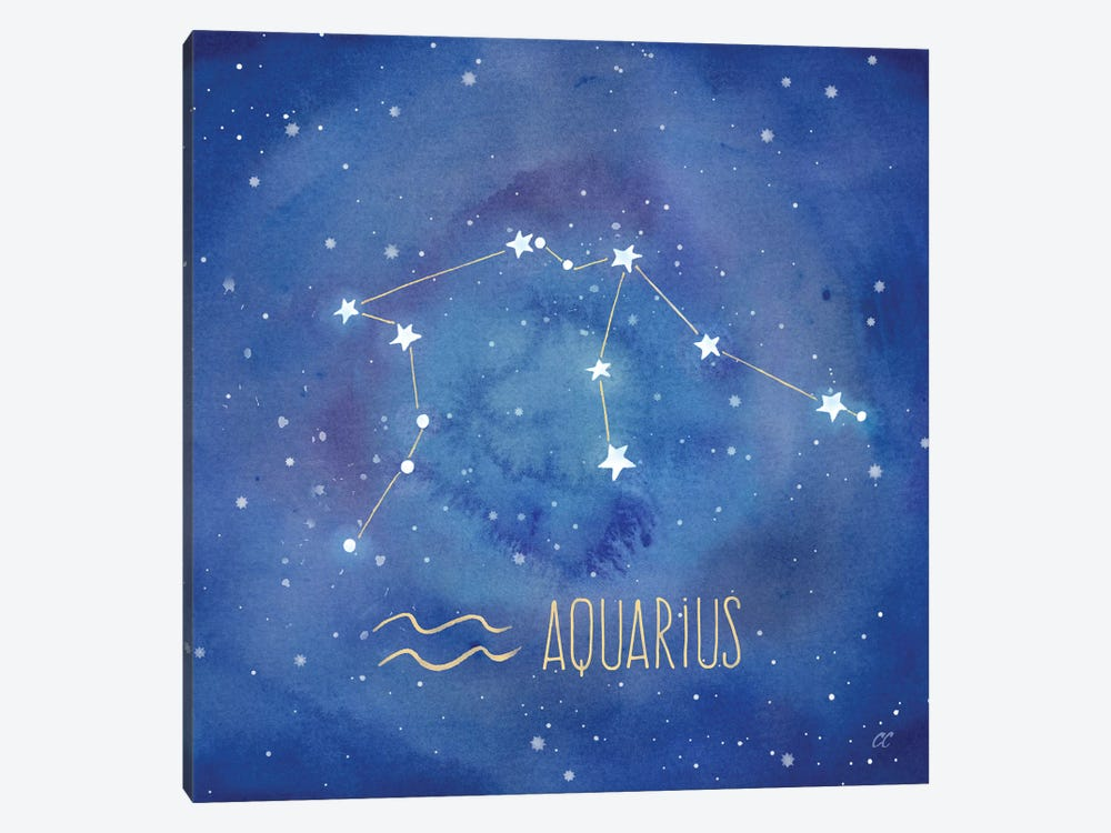 Star Sign Aquarius by Cynthia Coulter 1-piece Canvas Wall Art