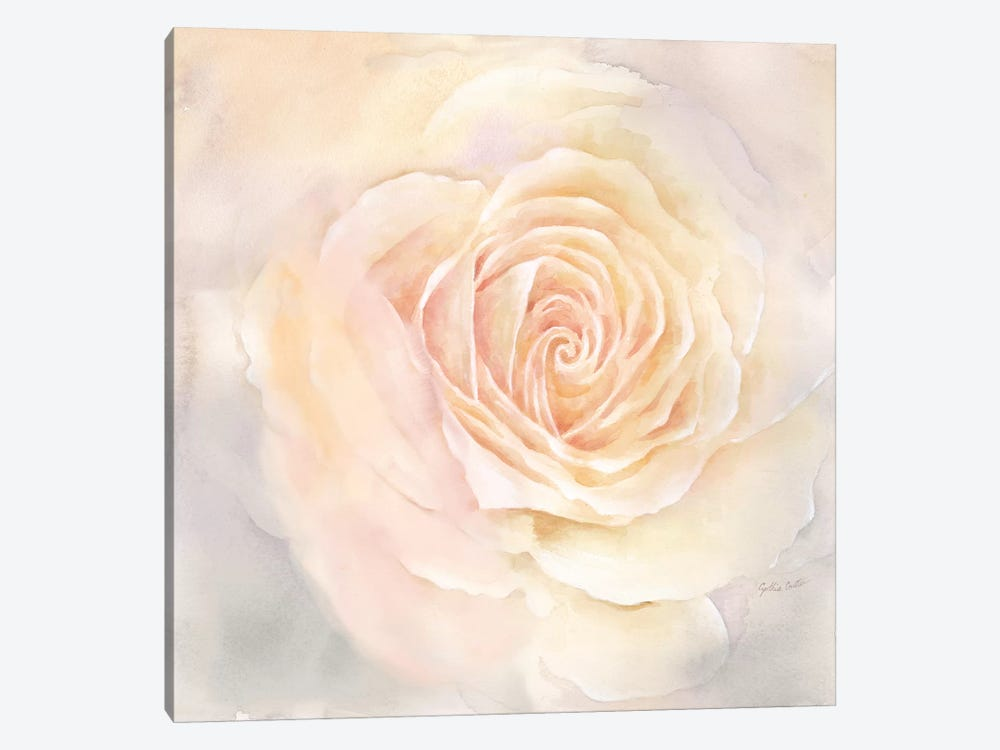 Blush Rose Closeup III by Cynthia Coulter 1-piece Art Print