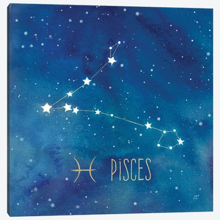 Star Sign Pisces Canvas Print #CYN86} by Cynthia Coulter Art Print
