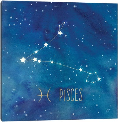 Star Sign Pisces Canvas Art Print