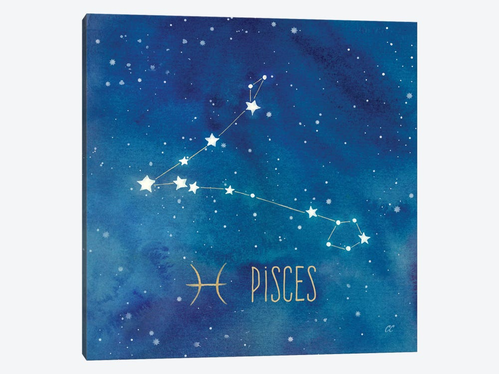 Star Sign Pisces by Cynthia Coulter 1-piece Canvas Art Print