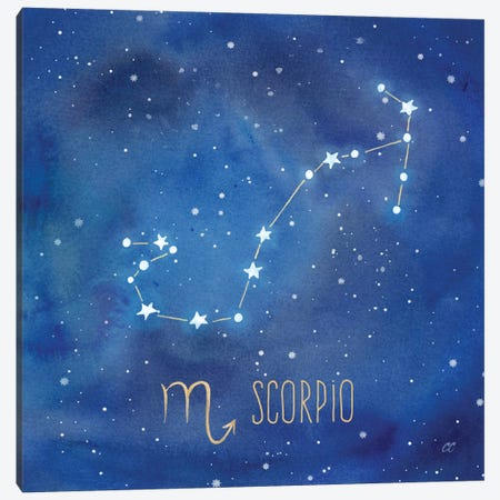 Star Sign Scorpio Canvas Print #CYN88} by Cynthia Coulter Canvas Artwork