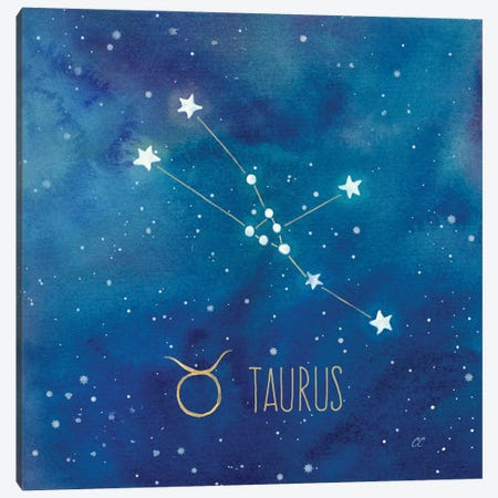 Star Sign Taurus Canvas Print #CYN89} by Cynthia Coulter Canvas Wall Art