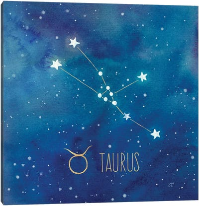 Star Sign Taurus Canvas Art Print