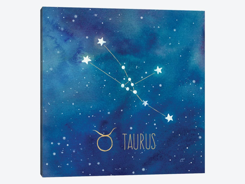 Star Sign Taurus by Cynthia Coulter 1-piece Canvas Artwork