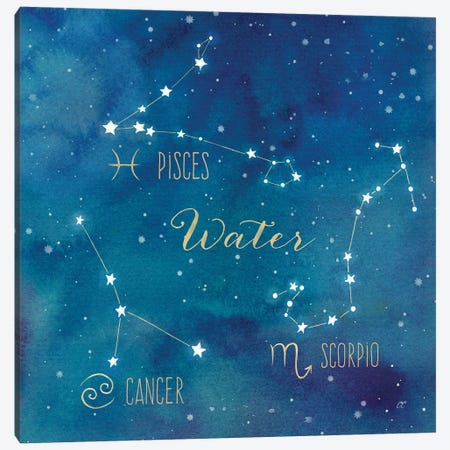 Star Sign Water 3-Piece Canvas #CYN91} by Cynthia Coulter Canvas Art Print