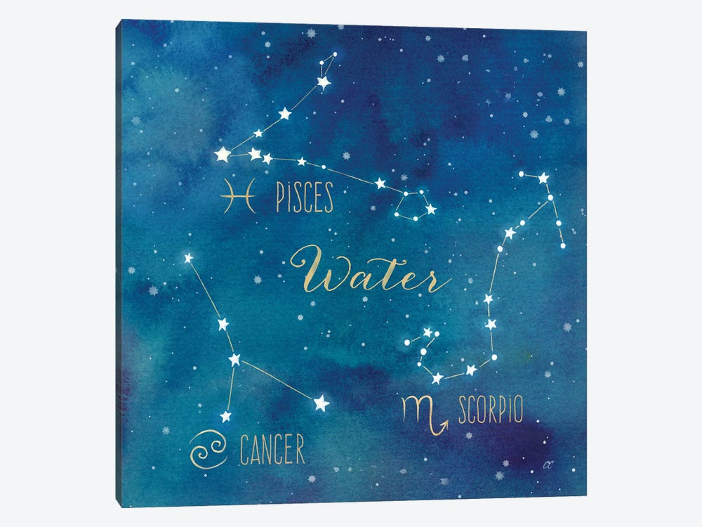 Star Sign Water by Cynthia Coulter 1-piece Canvas Art Print