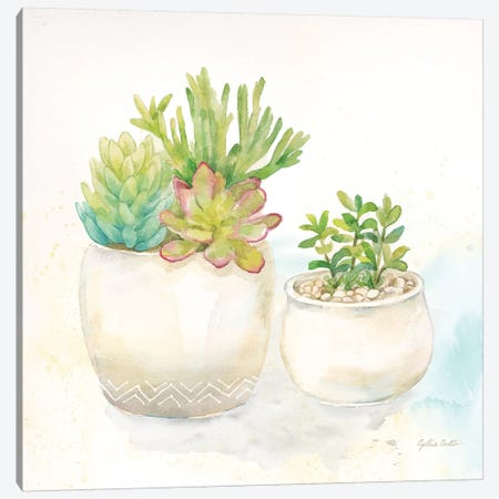 Sweet Succulent Pots I Canvas Print #CYN96} by Cynthia Coulter Canvas Art