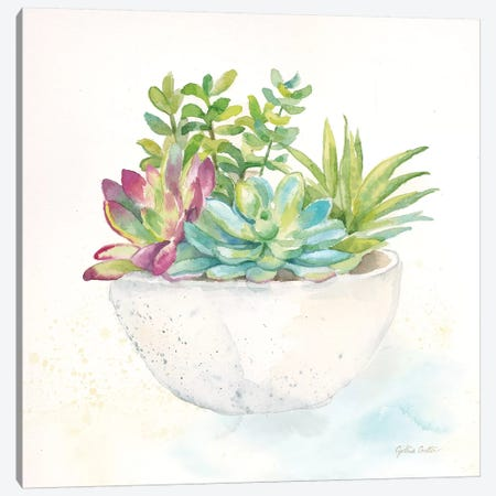 Sweet Succulent Pots II Canvas Print #CYN97} by Cynthia Coulter Canvas Art