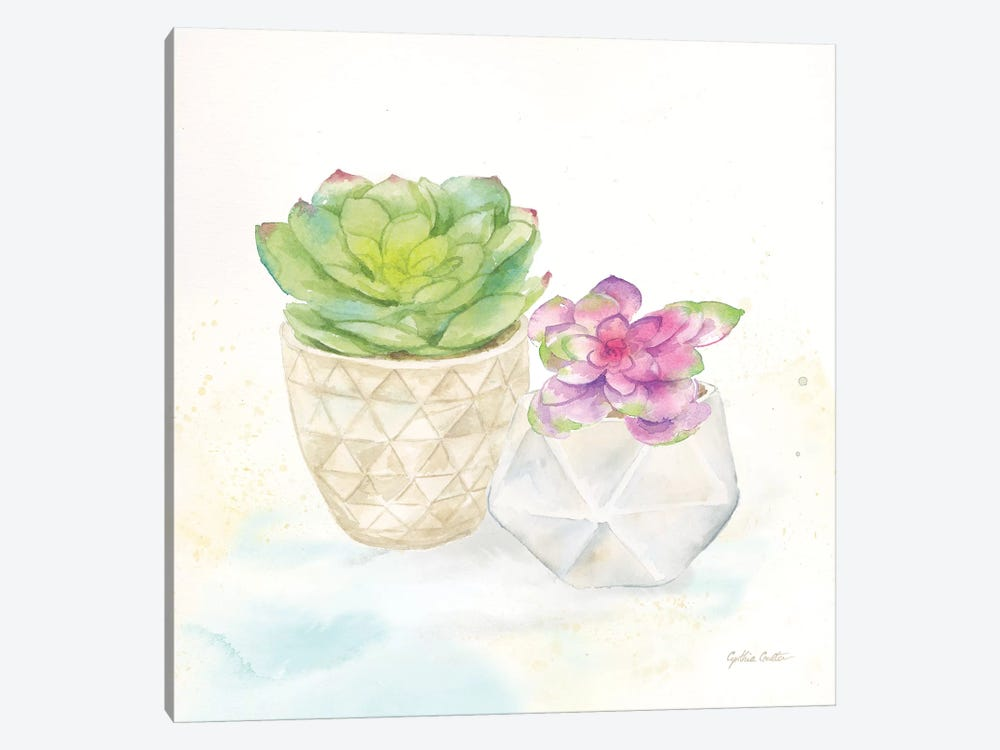 Sweet Succulent Pots III by Cynthia Coulter 1-piece Canvas Wall Art